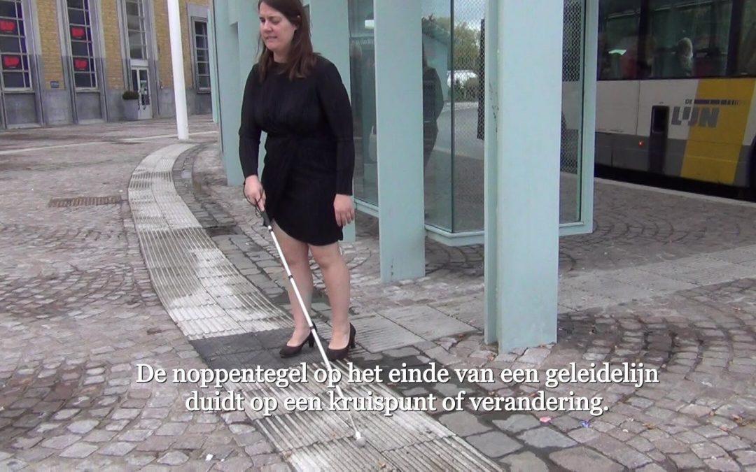 (Nederlands) Internationale dag van de witte stok